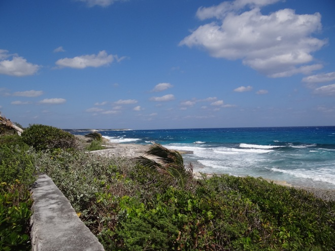 Windy shore- Atlantic side as seen from Stella Maris