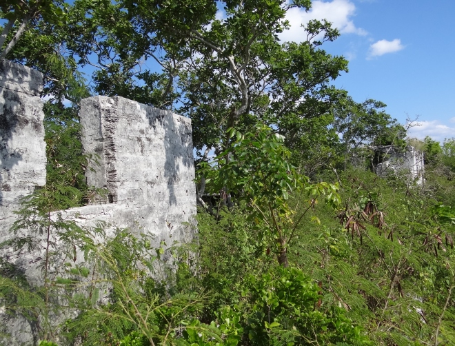 A large wall - Adderley Plantation ruins