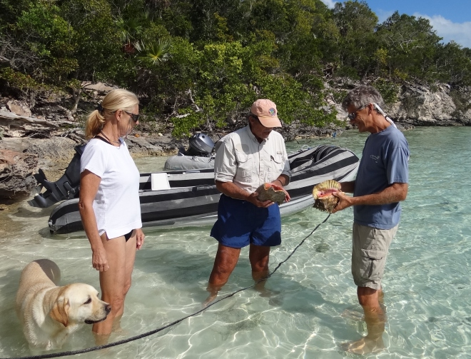 Steve explains conch basics: how to determine approx age.