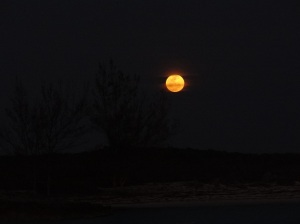 A full moon rose 5 mins after the sun set