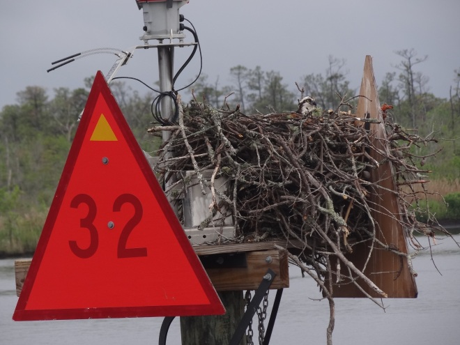 Sturdy nest completely decorated. Perfect for the osprey who appreciates color and a busy neighbor