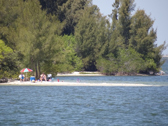 Locals find a sunny spot in the lee of trees on a large ICW spoil island