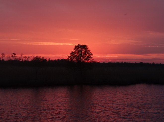 We do love our creeks and their sunsets