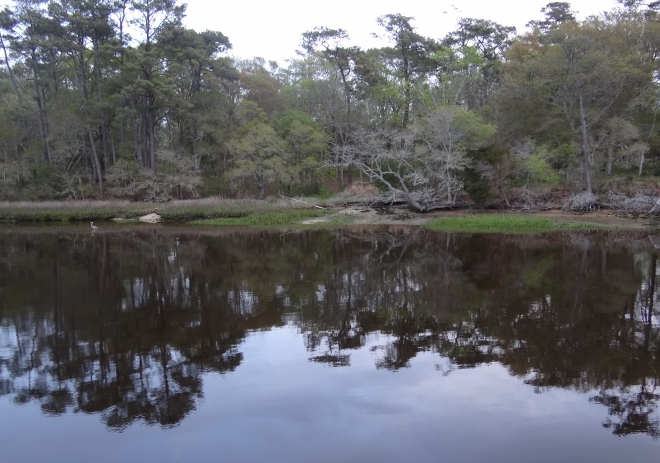 Our evening shoreside view at Calabash Creek
