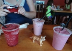 Our table tiger guards the delicious smoothies