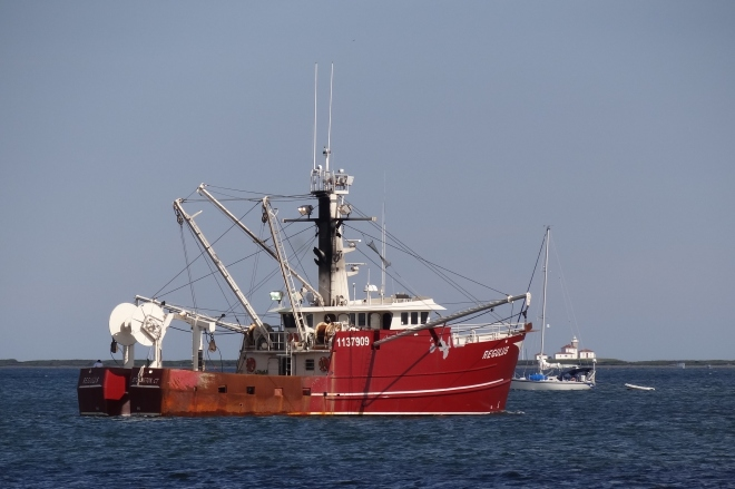 One of the boro's commercial fishing fleet heads out