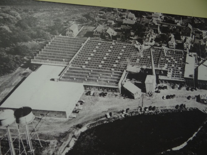 Overhead photo of the factory- note the multi-peaked roof that brings in more light