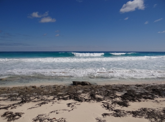 The ocean was very active off Guana Cay- surfing anyone?