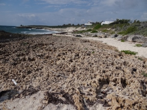 A rocky, other-world type beach with scattered sand spots is ideal for sea glass