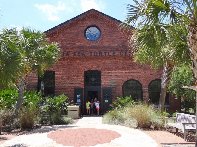 The GA sea turtle center located a short distance from the Pier Rd shops
