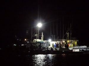 Fishing boat raft-up near Granite Pt. Turned off the bright light for the show.