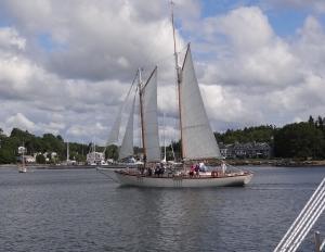 A pretty lady sails by