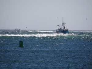 The local vessels navigate with ease