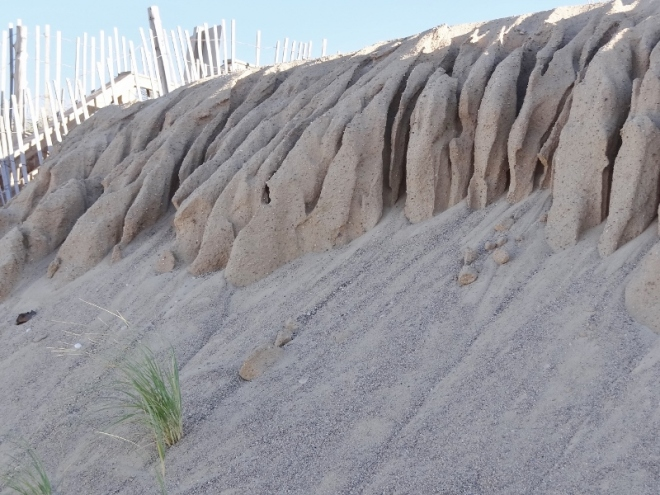 Mother Nature creates spooky sand at Sandy Neck Beach