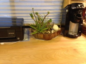 The lineup: printer, cactus planter circa 2010 and Keurig for Russ