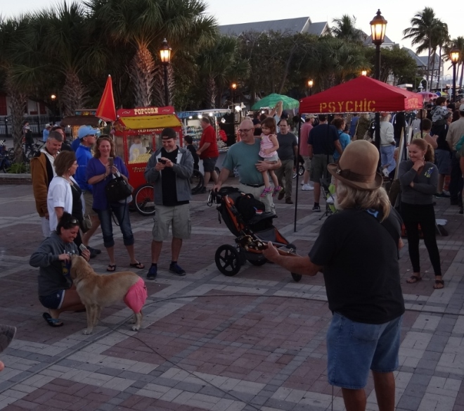 Evening entertainment at Mallory Sq- always brings a smile