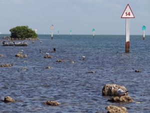 Remains of old causeway at Convoy Point in Biscayne Nat'l Park