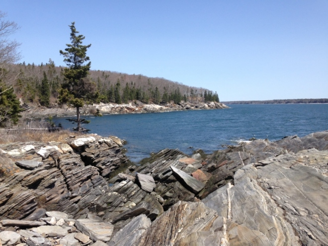 Traditional Maine coast view