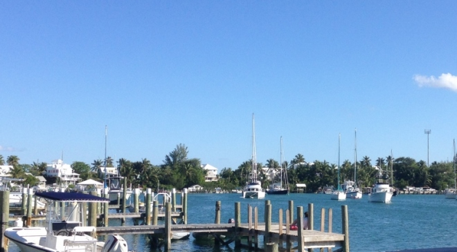 WE grew a tall mast!!