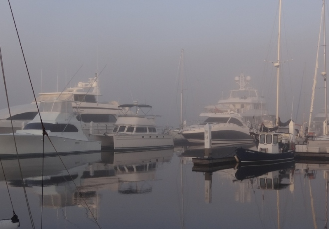 The fog rolls in at Ashley River Marina. PDQ Chloe Grace is for sale