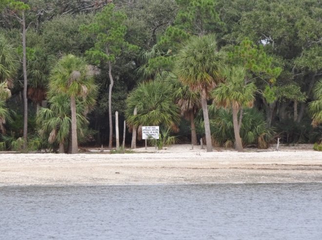 Observation Beach at Morgan, aka Monkey Island