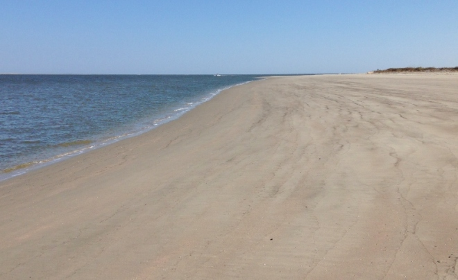 Near mouth of Stono River- land dinghy and walk this WIDE beach